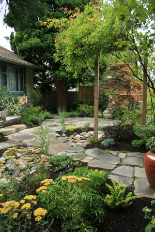 Rain garden landscape