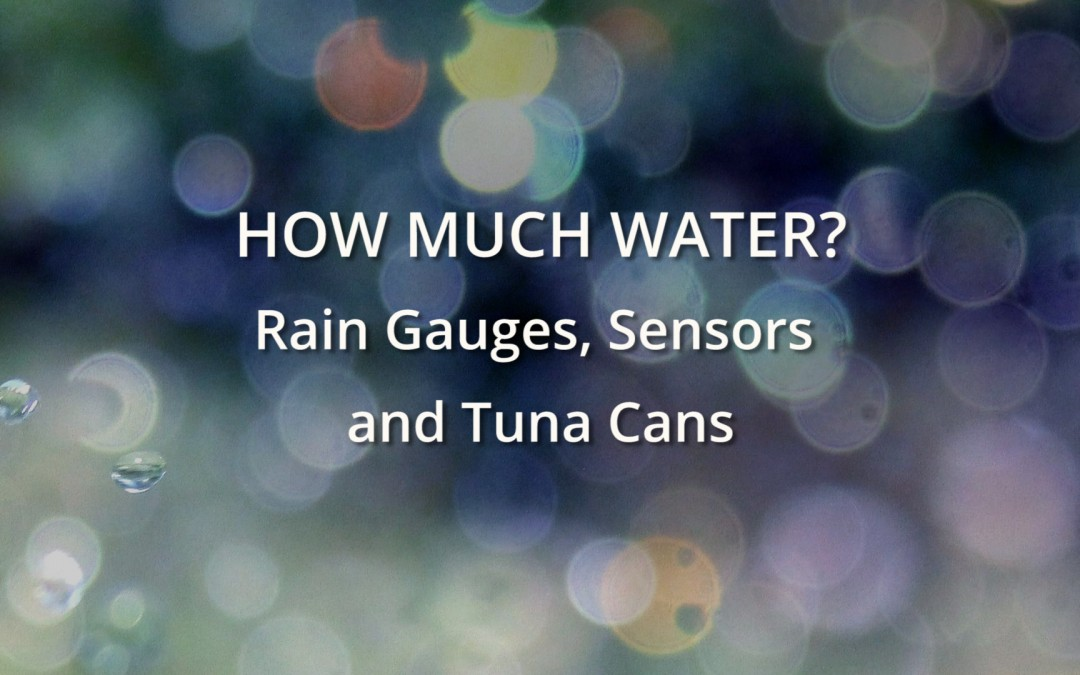 How much water? Rain gauges, sensors and tuna cans