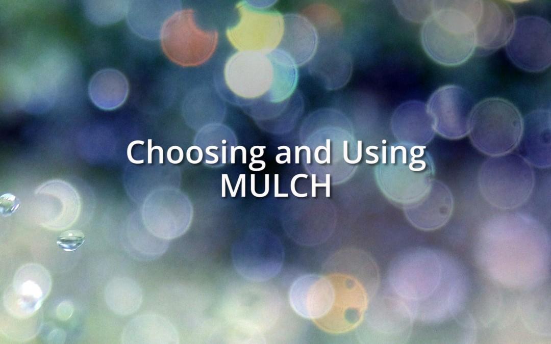 Choosing and using mulch