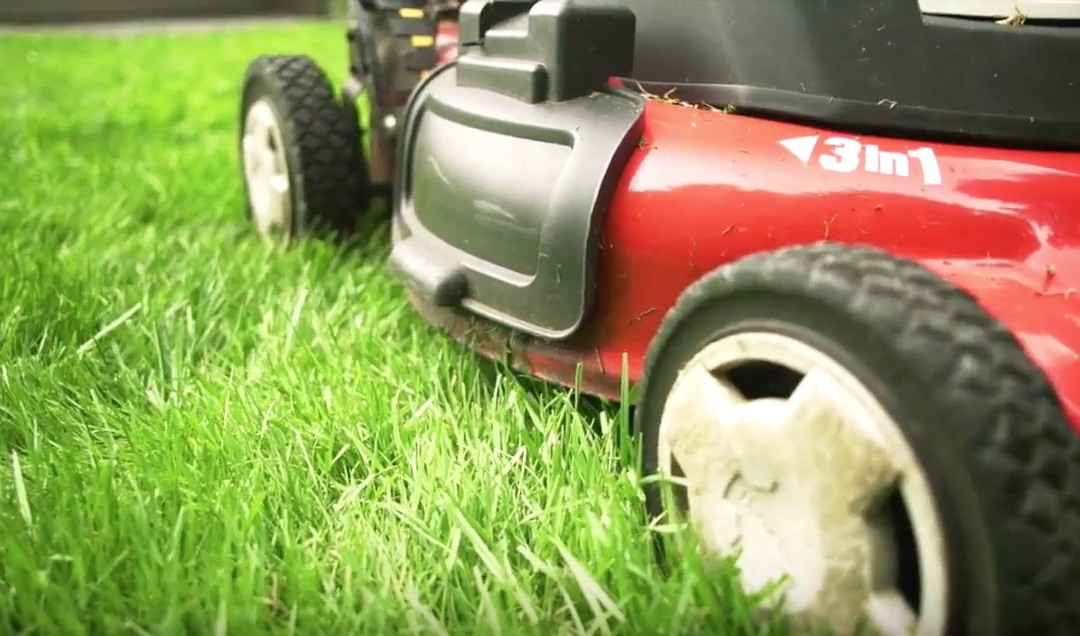 How to mow to keep your lawn healthy
