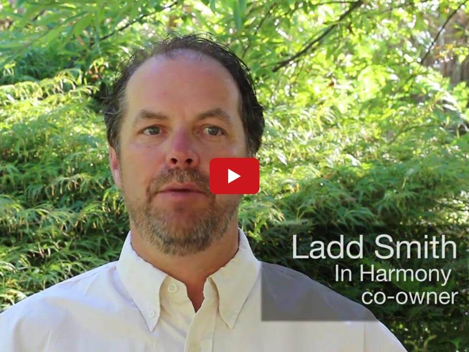 In Harmony Sustainable Landscapes, Natural Lawn Care