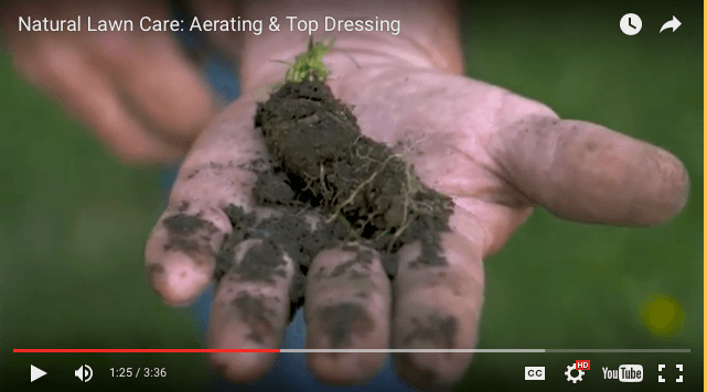 Now is the time to aerate and overseed your lawn