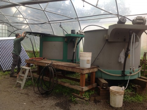 In Harmony's compost tea brewers