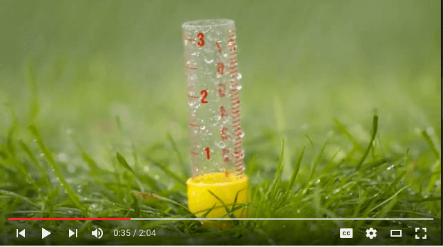 How to water for a healthy lawn