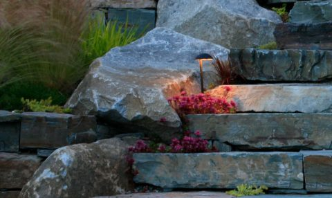 Landscape lighting makes stairs and paths safer, while enhancing plantings. In Harmony Sustainable Landscapes