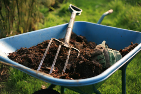 Mulch will dramatically reduce weeds in garden beds. In Harmony Sustainable Landscapes