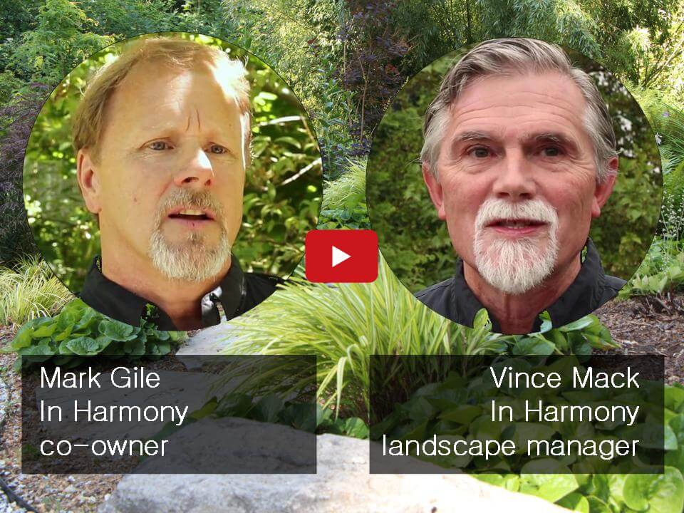 Sustainable Landscape Company In Harmony Sustainable Landscapes