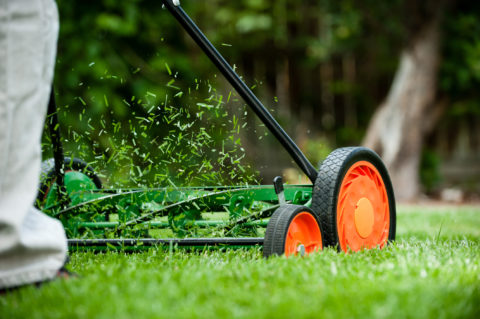Follow these mowing tips for less work and a healthier lawn. In Harmony Sustainable Landscapes