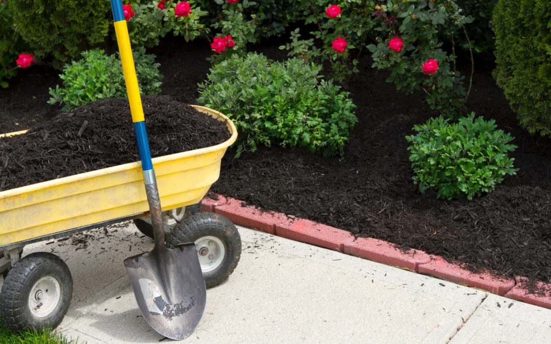 Add mulch now to reduce summer water needs