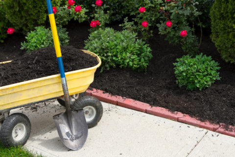 Mulch now to help your plants retain water during the hot, dry summer. In Harmony Sustainable Landscapes