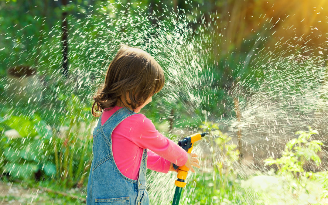 It's time to think about watering; check out our watering resources